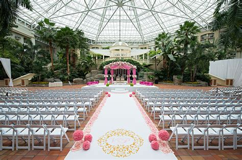 gaylord palms south asian bride magazine