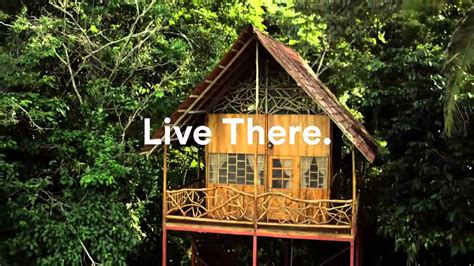 Tree House Airbnb Airbnb Treehouse Youtube