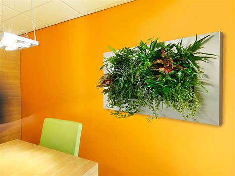 lebende pflanzenbilder kaufen pflanzenbilder hydroflora kleinode im gr 252 nen kleid hydroflora gmbh