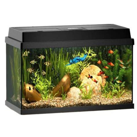juwel aquarium rekord 600 g 252 nstig bei zooplus