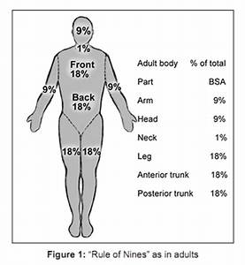Burn Percentage Chart Rule Of 9 Bioline International Official Site Site Up Dated Regularly