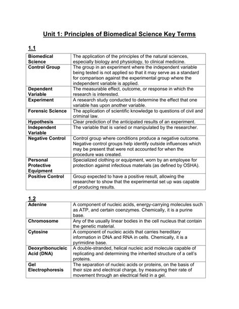 This type of insurance does not build up a cash value. Insurance Key Terms Worksheet Answers - Nidecmege