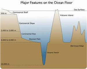 Ocean Floor Diagram