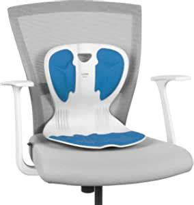 ablue Curble Chair Lumbar Support Back Pain Relief for ...
