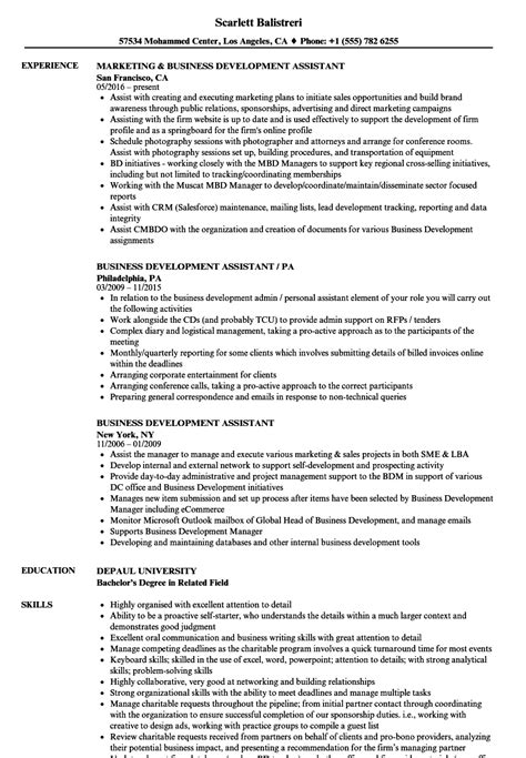 business development assistant sle resume sles of