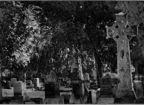 haunted graveyard  stock photo public domain pictures