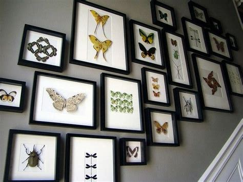 Taxidermy Home Decor: 59 Best Enmarcado Images On Pinterest