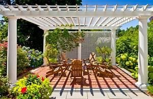 plante grimpante pergola obasinccom With comment monter une tonnelle de jardin 3 plante grimpante ombre pour pergola de jardin