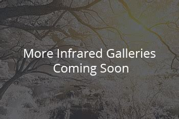 Infrared Photography Gallery Lifepixel Digital