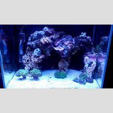 Nano Reef  Sick Aquascape Youtube