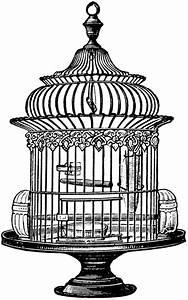 Free Vintage Bird Cage Clip Art | Graphics & Printables ...