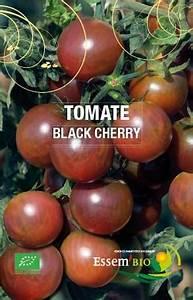 Plant Tomate Cerise : plant de tomate cerise black cherry 1 u les jardins ~ Melissatoandfro.com Idées de Décoration