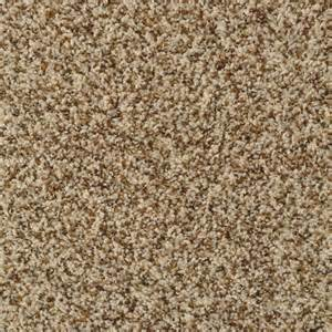 Carpet Tile Pricing by Shop Stainmaster Active Family Documentary French Toast