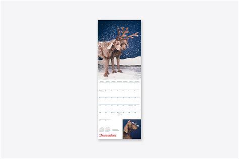 william wegman mans friend wall calendar wall abrams