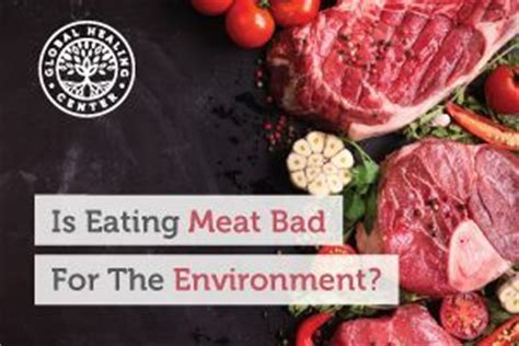 eating meat bad   environment