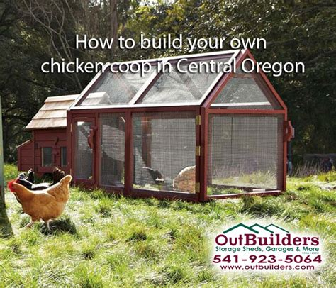 build your own coop how to build your own chicken coop in central oregon outbuilder