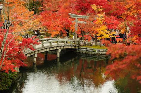 kyoto travel cost average price   vacation  kyoto