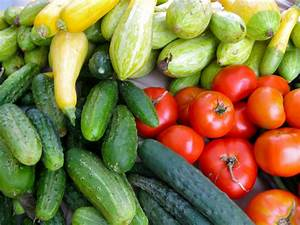 Watauga Food Council Connects Local and Healthy Food ...  Healthy