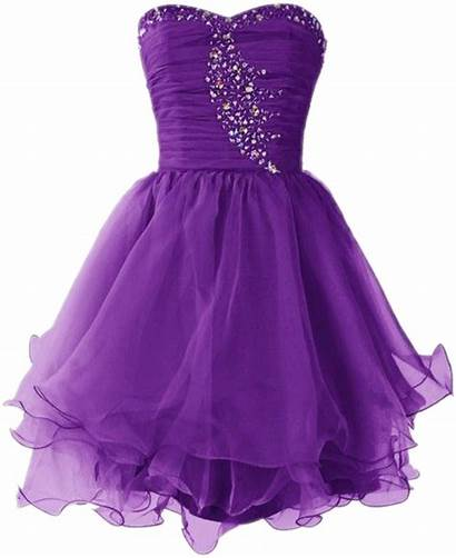 Purple Dresses Vestido Picsart Girly Short Homecoming