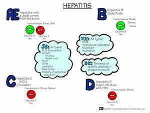 ABC Medicine Hepatitis A Transmission