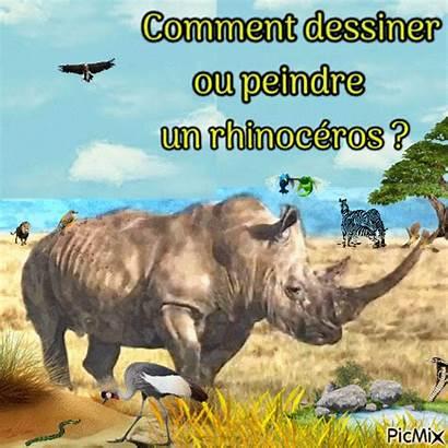 Pastel Acrylique Peinture Gouache Dessiner Rhinoceros Peindre