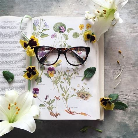 cat-thecatlady | Instagram posts, Book photography, Flowers