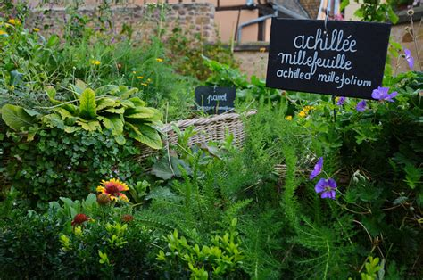 best gardening blogs best urban gardening and container growing blogs urban turnip