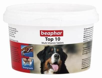 Vitamins Multi Dog Multivitamin English Beaphar Vitamin