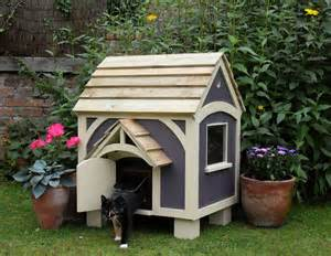 best cat house can cats eat bananas cancats net