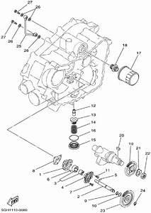 2003 Yamaha Kodiak 450 Wiring Diagram