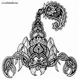 Scorpion Tattoo Doodles Welshpixie Scorpio Adult Deviantart Colouring Drawings Tattoos Coloring Scorpions Mandala Drawing Prison Doodle Deviant Traditional Abstract Shapes sketch template