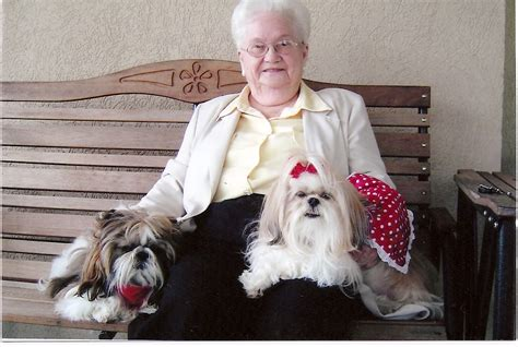 reduce unease  seniors  pet therapy  anxiety