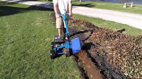 How To Edge Garden Beds With A Bluebird Bed Bug Landscape