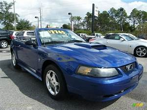 2003 Ford Mustang V6 Convertible in Sonic Blue Metallic photo #14 - 368010 | Jax Sports Cars ...