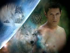 Twilight Wolf Pack Paul