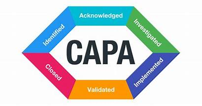 Corrective Preventive Capa Action Actions Management Intland