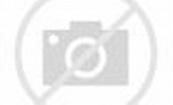李亞鵬愛情上位史:曾和王菲結婚,戀過柯藍瞿穎,周迅也是前女友 - 每日頭條