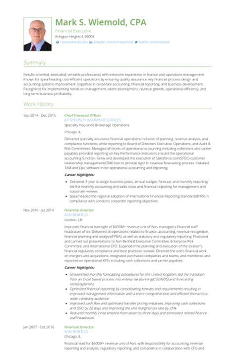 chief financial officer resume sles visualcv resume