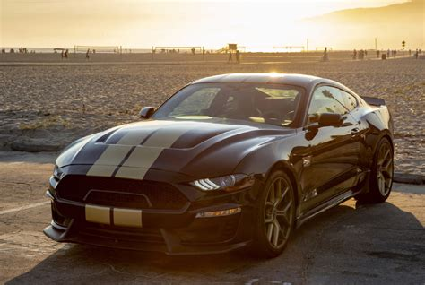 shelby gt squeezes  horsepower  mustang