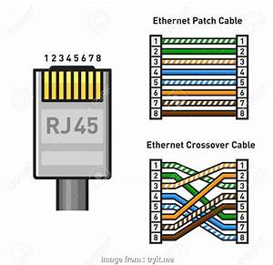Cat6 Connector Wiring Diagram Creative How To Wire A Cat6 Rj45 Ethernet Jack Handymanhowto  At