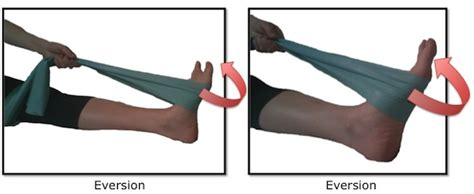 The bones and joints in the feet experience wear and tear, so conditions that cause damage to the foot can directly affect its health. Exercise of the Day: Day 19- Ankle Inversion/Eversion with ...