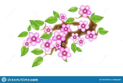 Rama De Sakura Con Las Flores En Estilo Del Animado Flor