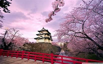 Korea Wallpapers Spring South