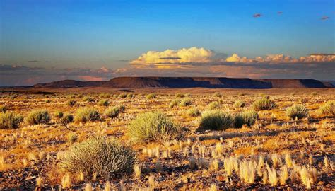 Deserti spettacolari: ecco quelli da non perdere   SiViaggia
