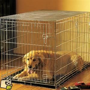 Cage Transport Chien Voiture : cage acier avec porte pour enfermer le chien a la maison ~ Medecine-chirurgie-esthetiques.com Avis de Voitures