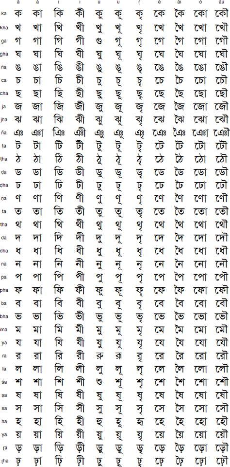 curriculum vitae curriculum vitae pronunciation  hindi