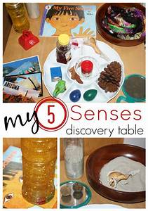My 5 Senses - Activities And Printables