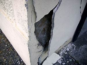 Reparation Fissure Facade Maison : forum travaux bricolage chute du cr pi fa ade maison ~ Premium-room.com Idées de Décoration