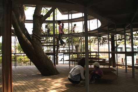 ring   tree fuji kindergarten japan  architect