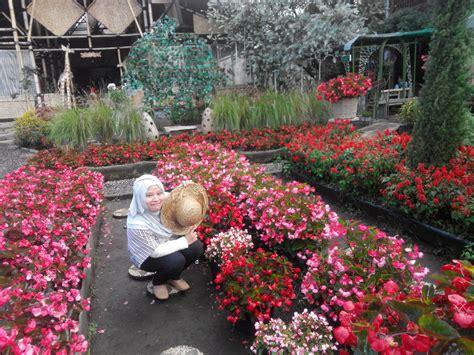 bandung floating market kebun bunga begonia pabrik